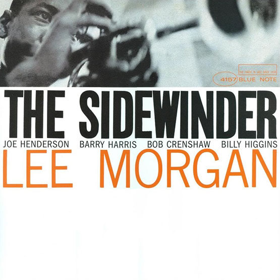 Pat Metheny  - The Sidewinder
