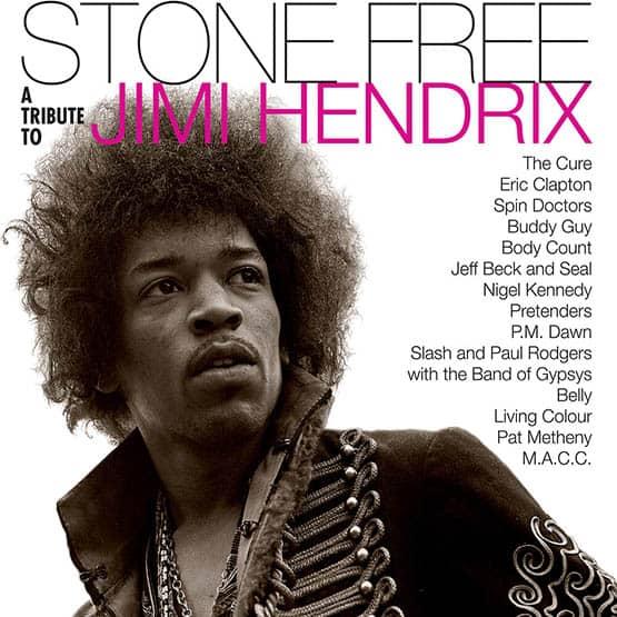Various Artists - Hendrix Tribute: Stone Free 2LP
